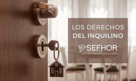 Vivir de alquiler: los derechos del inquilino