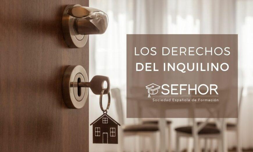 Descubre los derechos del inquilino