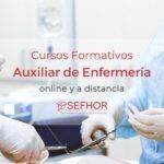 Estudiar Enfermería a distancia en Sefhor