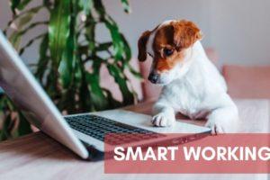 smart-working