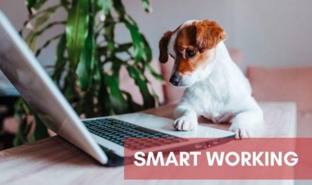 La revolución del Smart Working